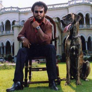 スレーシュ・クリシュナー監督、リマスター版【バーシャ】を語る。(The Hinduインタビューより)