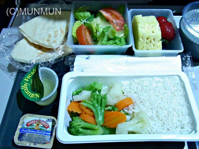 機内食マニア:DL283便 (Hindu) 20100728