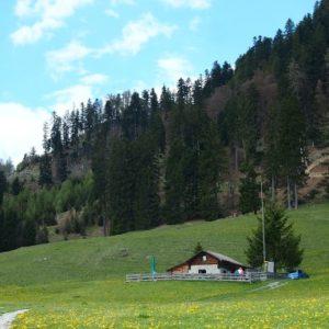 スイス(+アラブ首長国連邦+フランス)旅行から帰国しました。