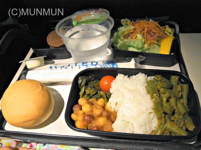 UA803 Hindu 20111024